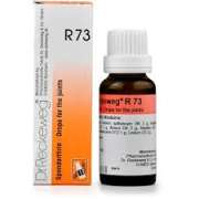 Dr. Reckeweg R73 Joint-Pain Drops
