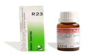 Dr. Reckeweg R23 Eczema Drops