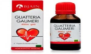Bjain Guatteria Gaumeri medicine for high Cholesterol