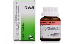 Dr. Reckeweg R65 Psoriasis Drops